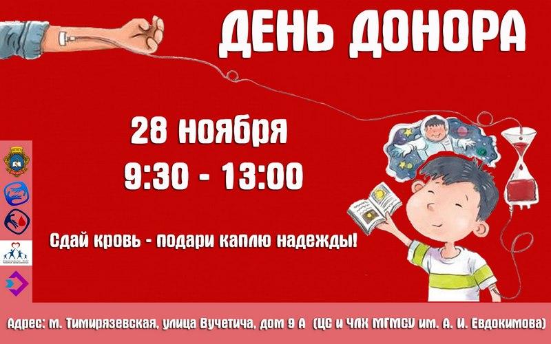 den-donora-mgmsu-28-11